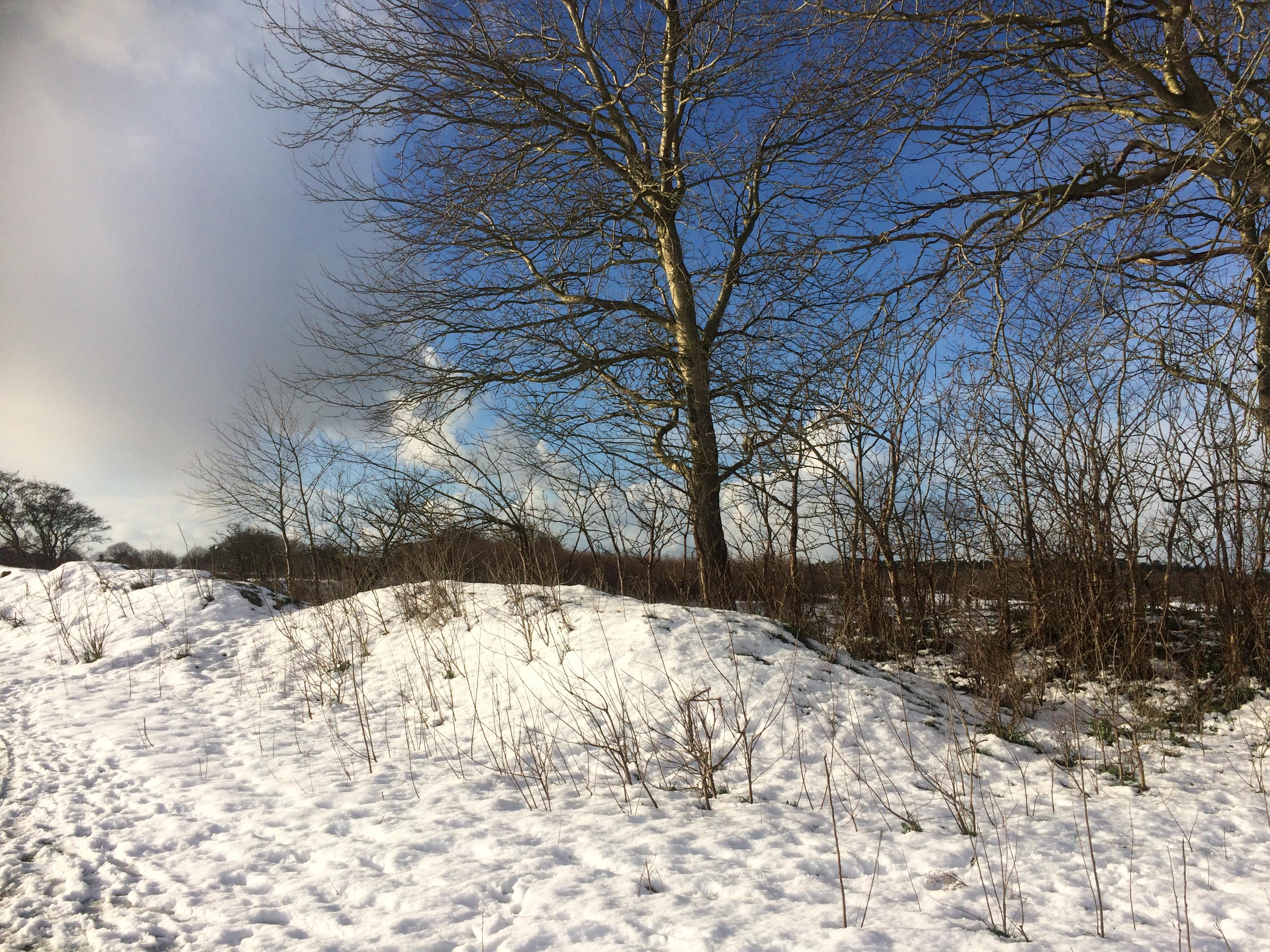 Egmond in de winter