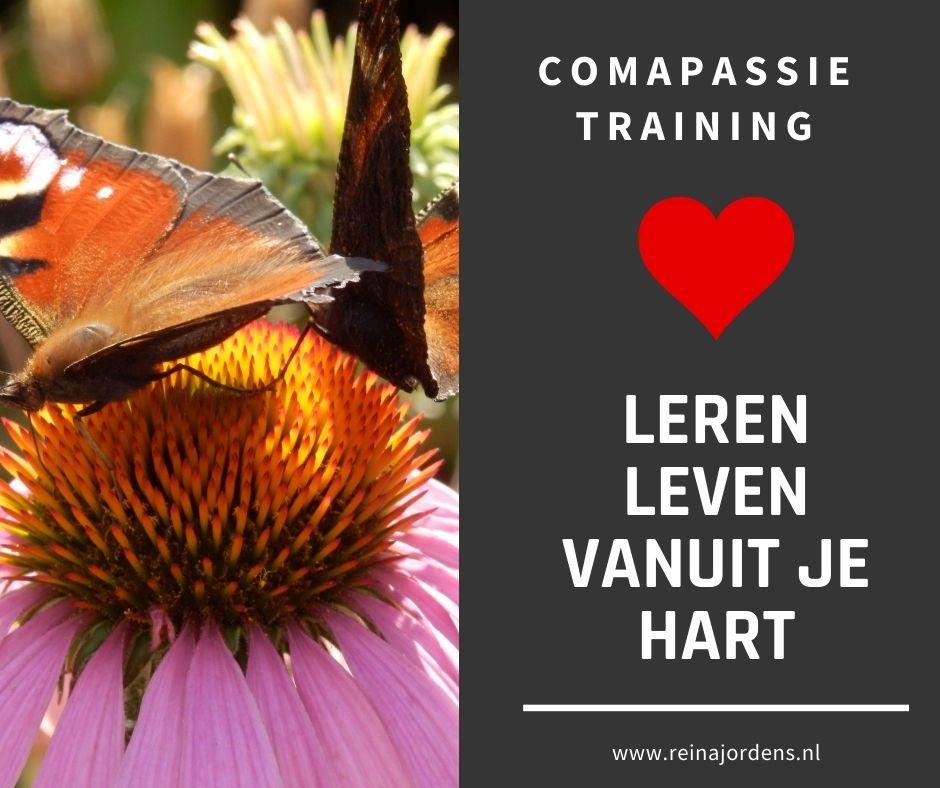 Compassietraing Alkmaar